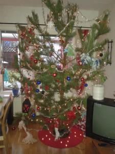 Homegrown christmas tree
